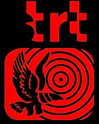 logo stirtt.png