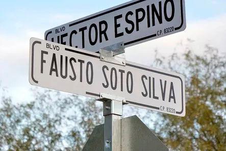 Fausto Soto S 2.jpg