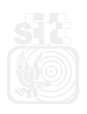 LOGO STIRTT MARCA DE AGUA MINI 2.jpg