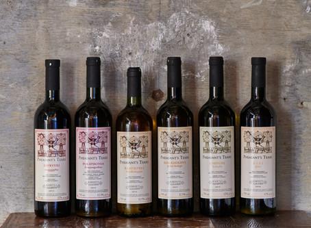 宇宙で初めて!葡萄がワインになった8000年前の味を知りたい vol.01
