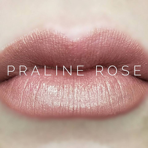 praline rose.jpg