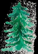 Pine18.png