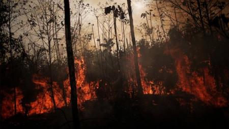 PM Ambiental deflagra operação especial contra queimadas, a partir de segunda-feira