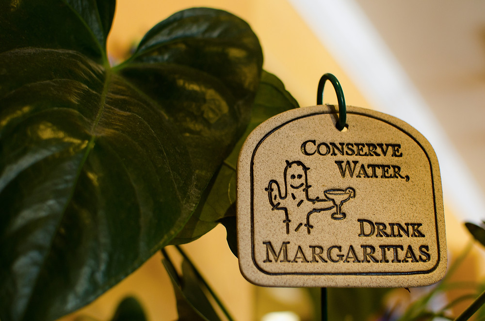 web-conserve-water-drink-margaritas_1-copy.jpg