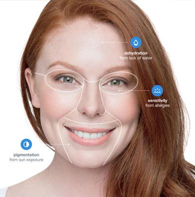 dermalogica face mapping.jpg