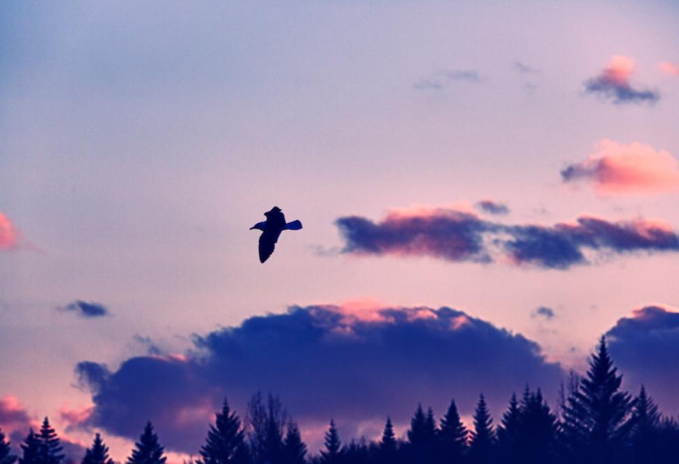 Вечер в облаках