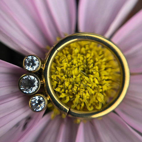 *SALE* - QualiTi Hinged Ring (Rose Gold Anodised)