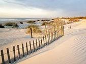 SC Dunes.jpg
