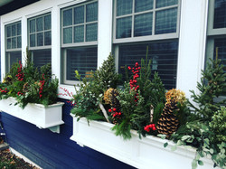 Window box ready for winter!