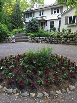 Circle garden with annuals.