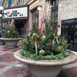 Huge planters in downtown St. Paul.