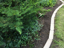 We love this beautiful edging