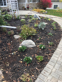 After: This Native Garden design