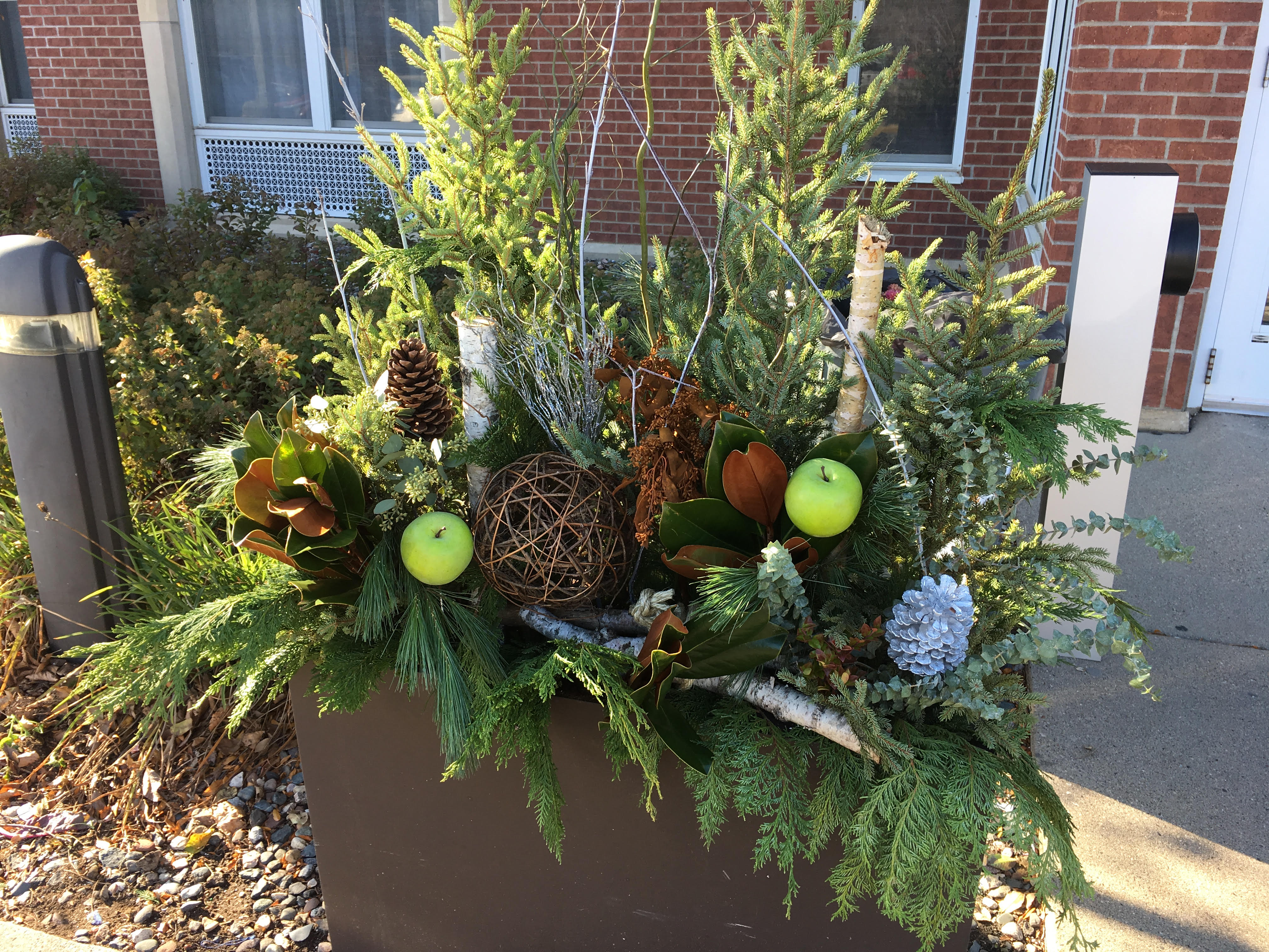 Unique Winter planter