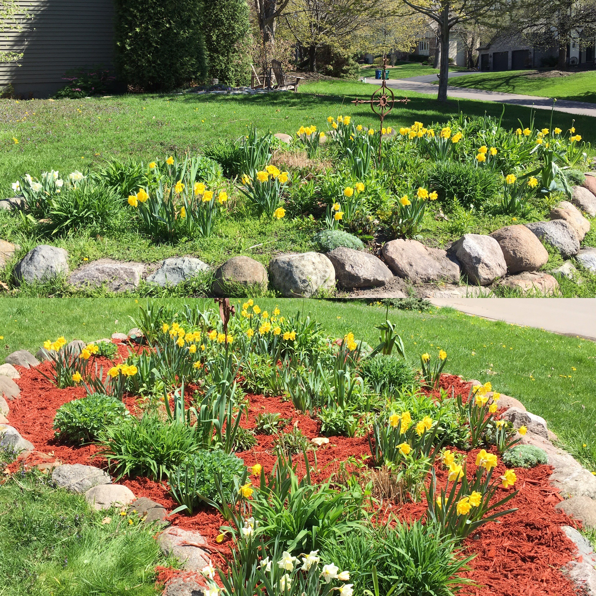 Weeding & mulch and looks great!