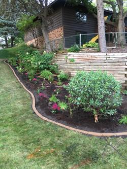 Brand new garden!