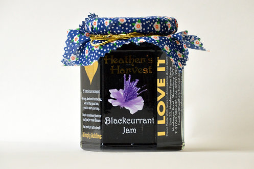 Blackcurrant Jam mini Jar 100g 3 gold star winner 2020