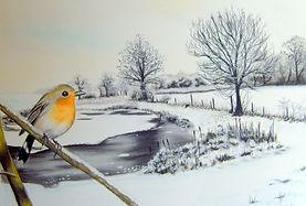 Snow robin.jpg