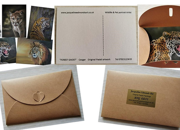 Postcard Gift Set. BIG CATS