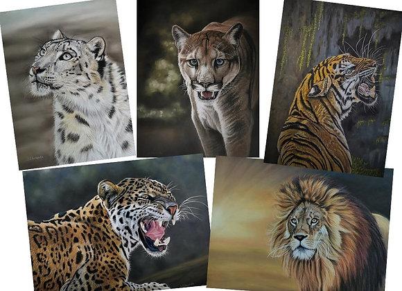 Big Cats Postcards
