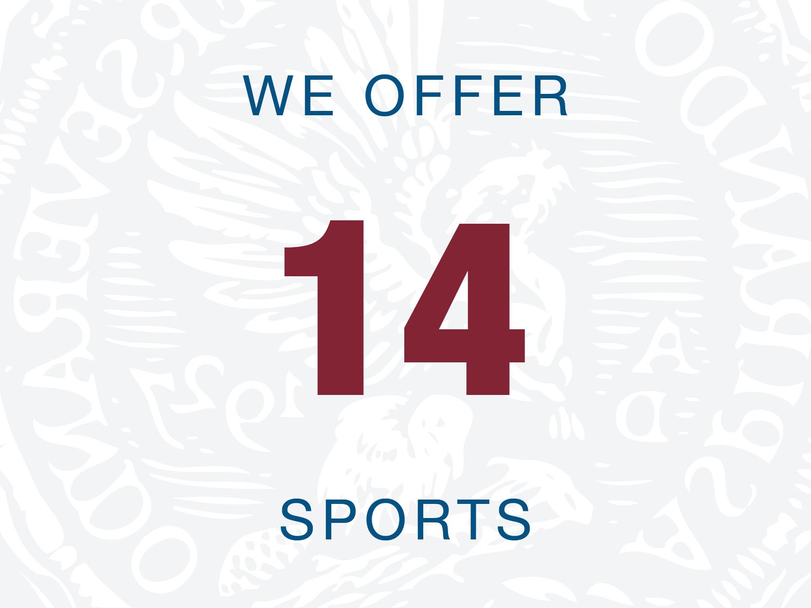 14sportswebgraphic