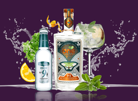 Get your hands on the National Television Awards One Gin