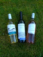 3 bottle offer