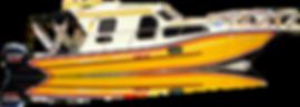 FISHING-300-Interno.png
