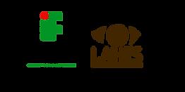 logos rodapé.png