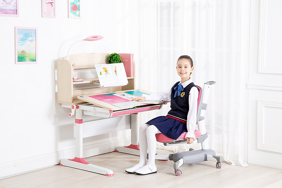 KidSrite Study Desk & Chair Set (X9+T7)