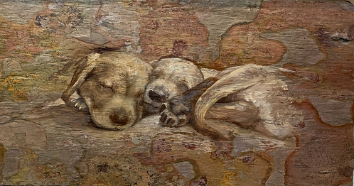 Three? Puppies