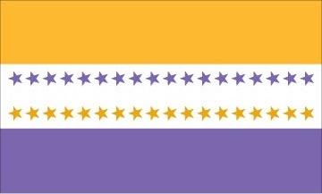 Suffragists Flag