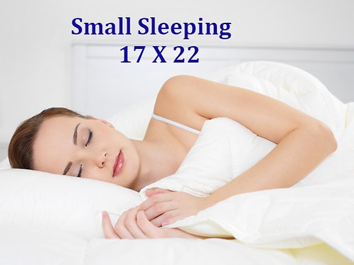 "Buckwheat Pillow -Small (17""X22"")"