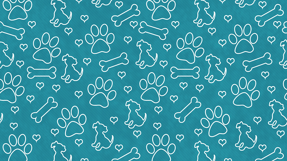 paws pattern.png