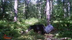 East Bora Big Bear Aug 28