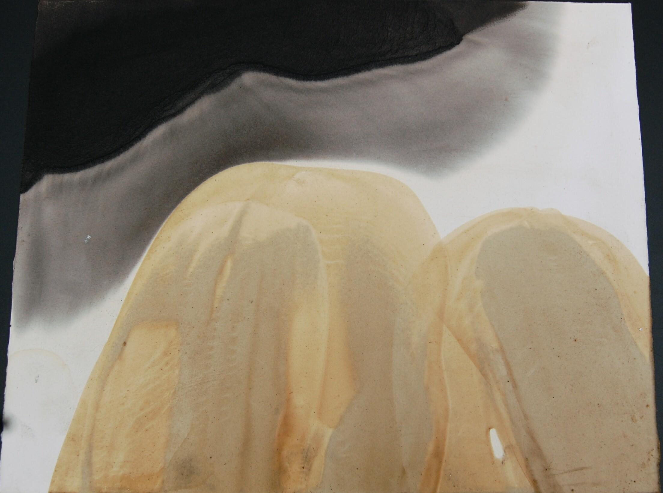 Cire et huile 50x40 2013