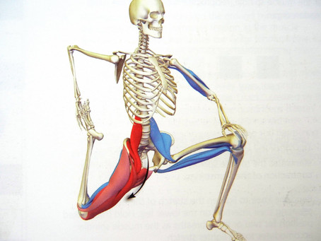 The Hip Flexors : If Forgotten Can Lead To  Lower Back Pain