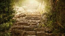 Ancient Paths / uralte Wege
