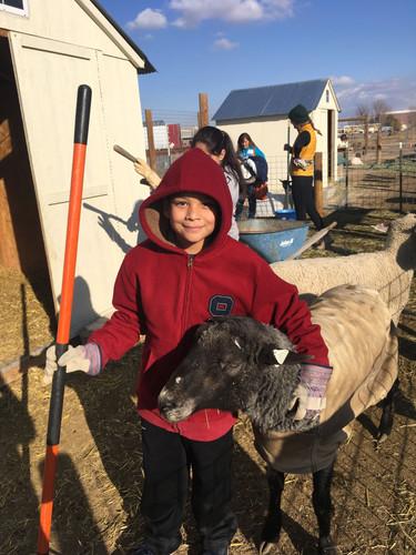 Joyful work on the farm
