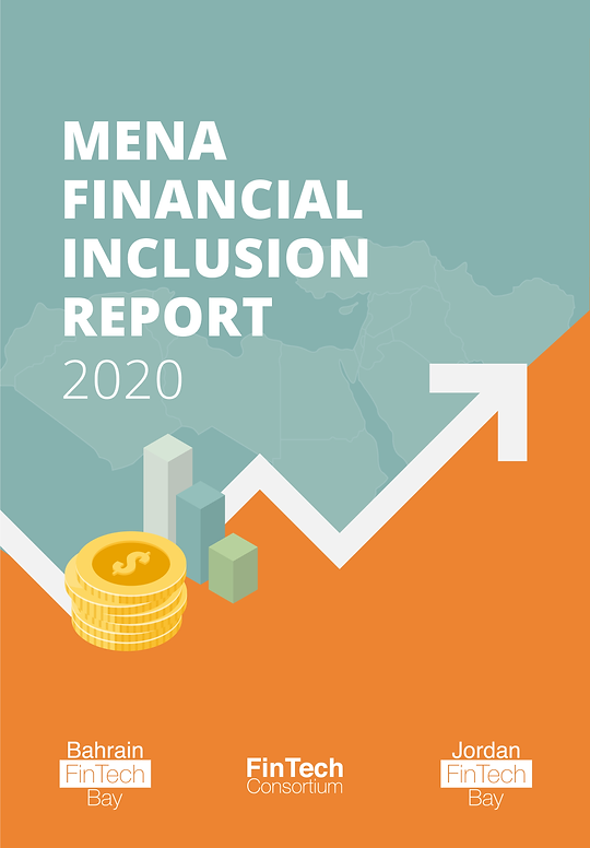 Main Financial Inclusion Cover.png