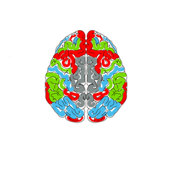 Brain Cancer Awarness