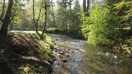 creek-slider.jpg