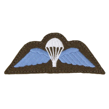 velcro-jump-wings-patch-blue-0047_edited