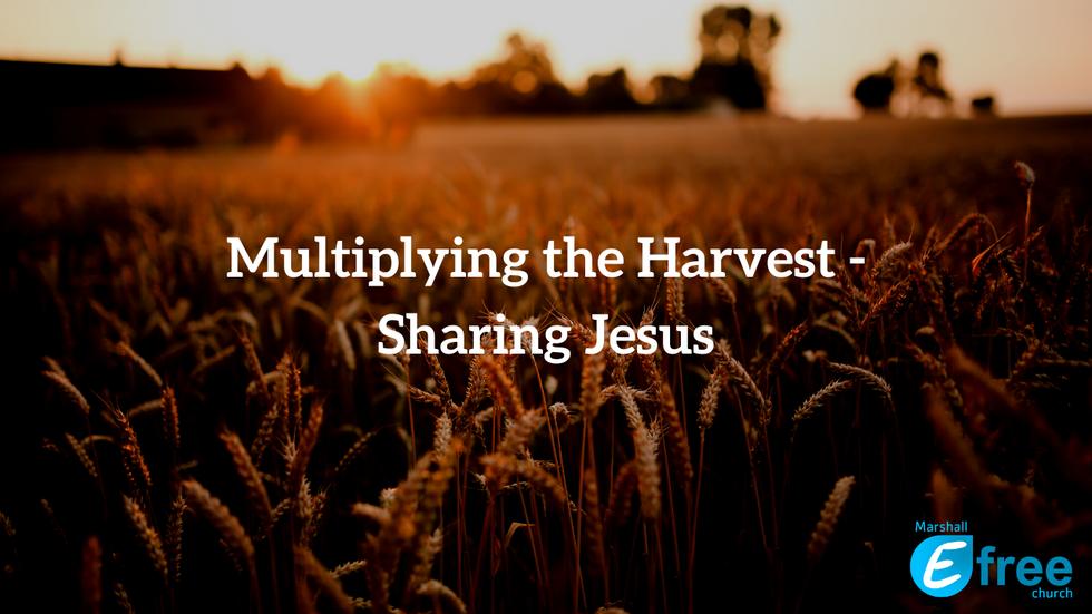 Multiplying the Harvest - Sharing Jesus
