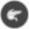 Pankreas-Logo_edited.png