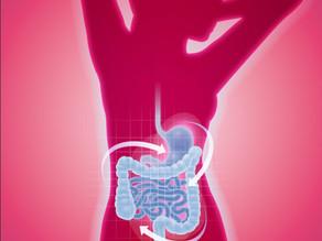 Pankreas-Darm-Hirn-Achse