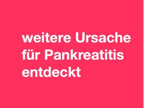 Forscher identifizieren weiteren Auslöser für Pankreatitis
