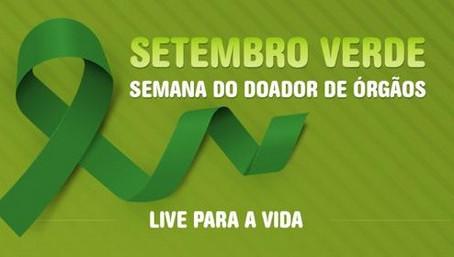 SP: Saúde promove 1ª programação artística virtual sobre doação de órgãos