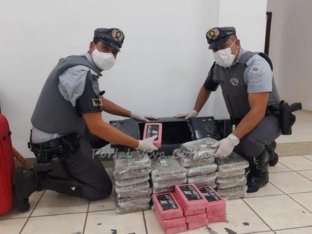 Equipe de TOR apreende drogas e dinheiro na Rodovia Castello Branco