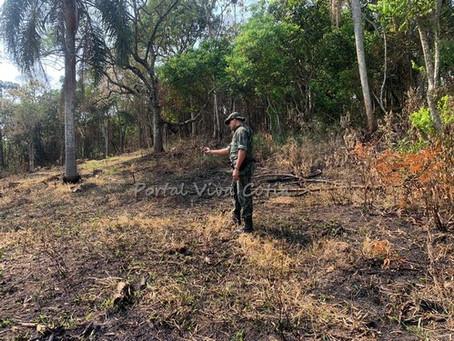 Polícia Ambiental flagra novo desmatamento na região do Jardim do Engenho